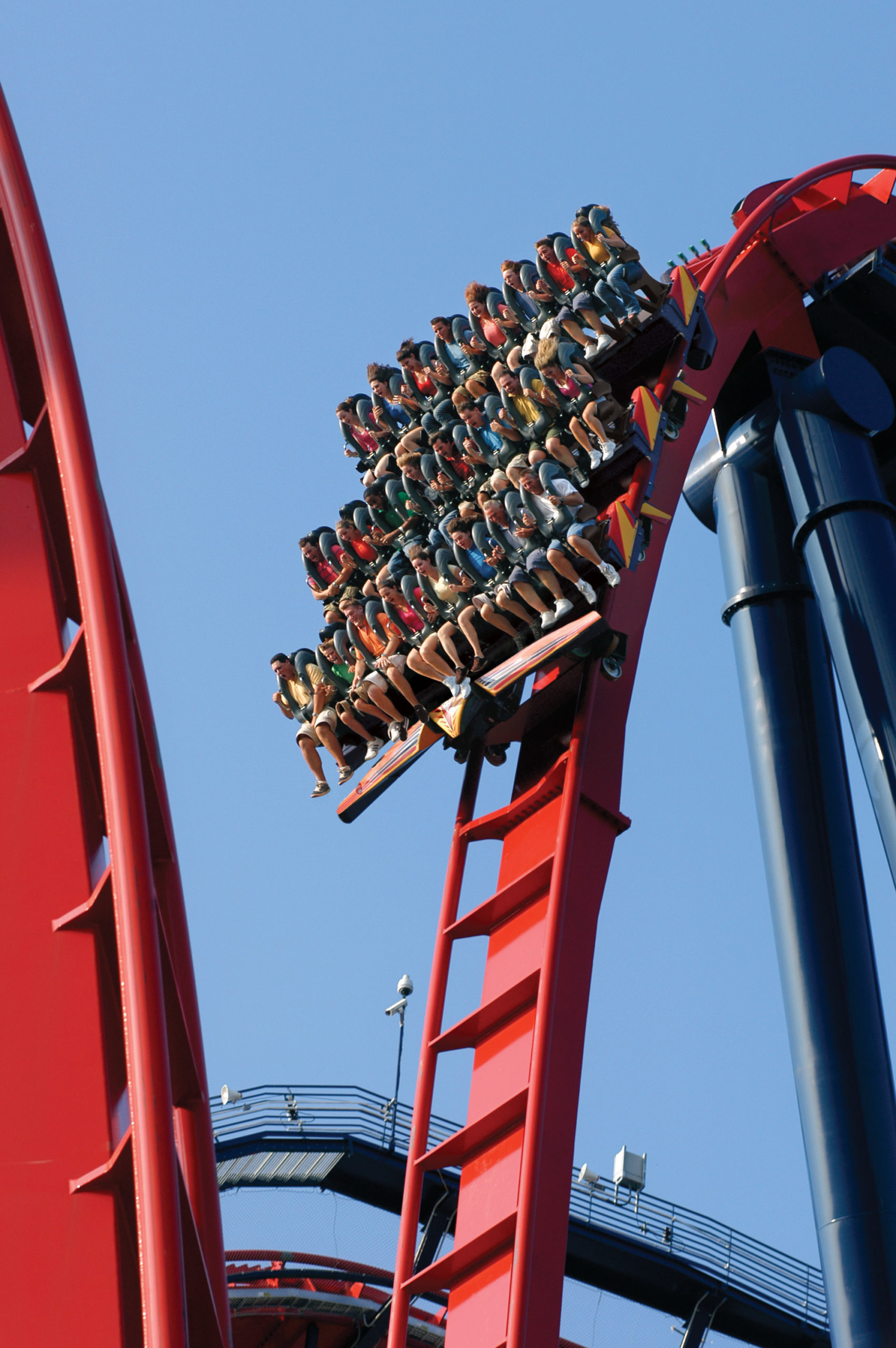 Sheikra at Busch Gardens Tampa Bay