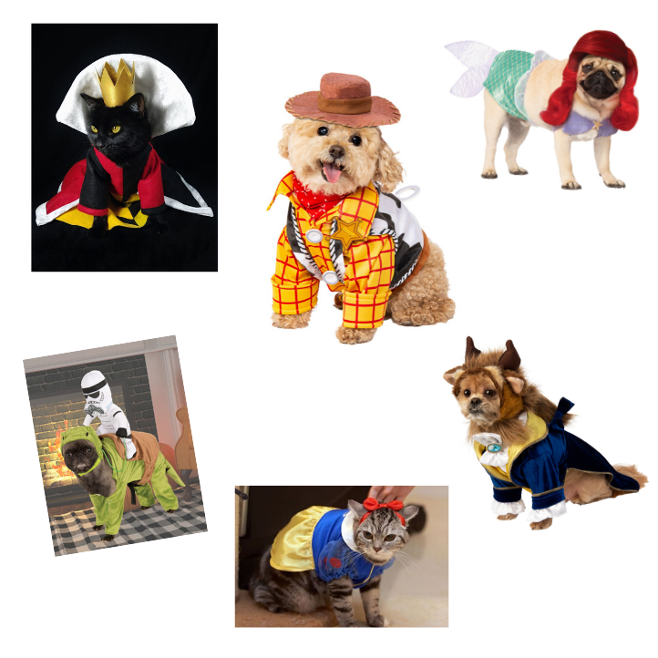 Dogs in Disney outfits
