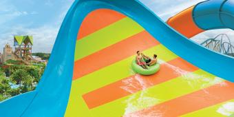 KareKare Curl Creates a Whirl at Aquatica, Orlando