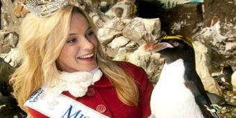 Miss California Hangs Out at SeaWorld San Diego!