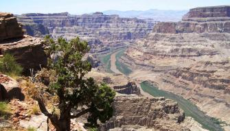 Grand Canyon West Rim Hoover Dam Combo Jeep Tour